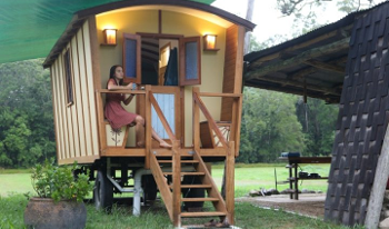 Accommodation Image for Gypsy Wagon Glamping