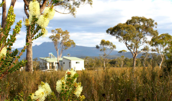 Accommodation Image for Buttongrass Retreat