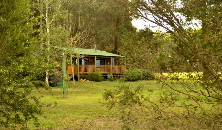 Accommodation Image for Diamond Forest Farm Stay