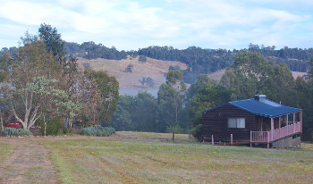 Accommodation Image for Mountain View Cabin