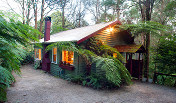 Accommodation Image for Cottage in the Forest