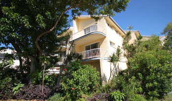 Accommodation Image for Pandanus Paradise